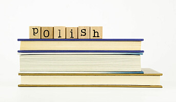 Rekordmange søker om godkjenning av utenlandsk utdanning