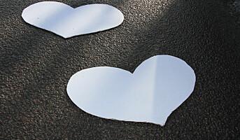 Skilsmisse: - Forebygger med eget familiedirektiv