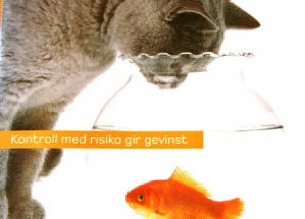 risikovurdering_brosjyre.jpg