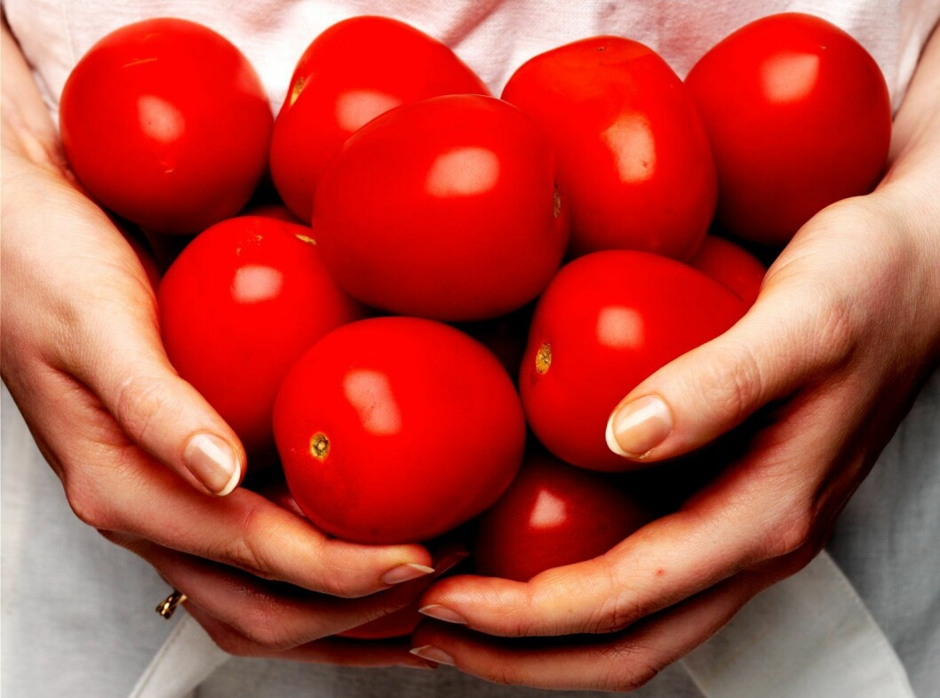 tomater_colourbox