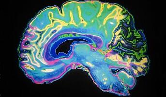 En krevende jobb beskytter mot Alzheimer