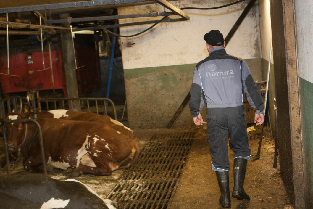 JOBBER MYE: Norske bønder har lange arbeidsdager og kort ferie, viser en ny undersøkelse. (Foto: Creobox)